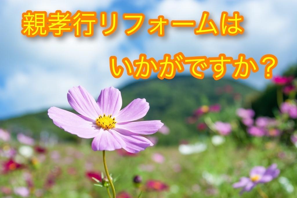 f:id:kokotiyoikurashi:20181016230307j:plain