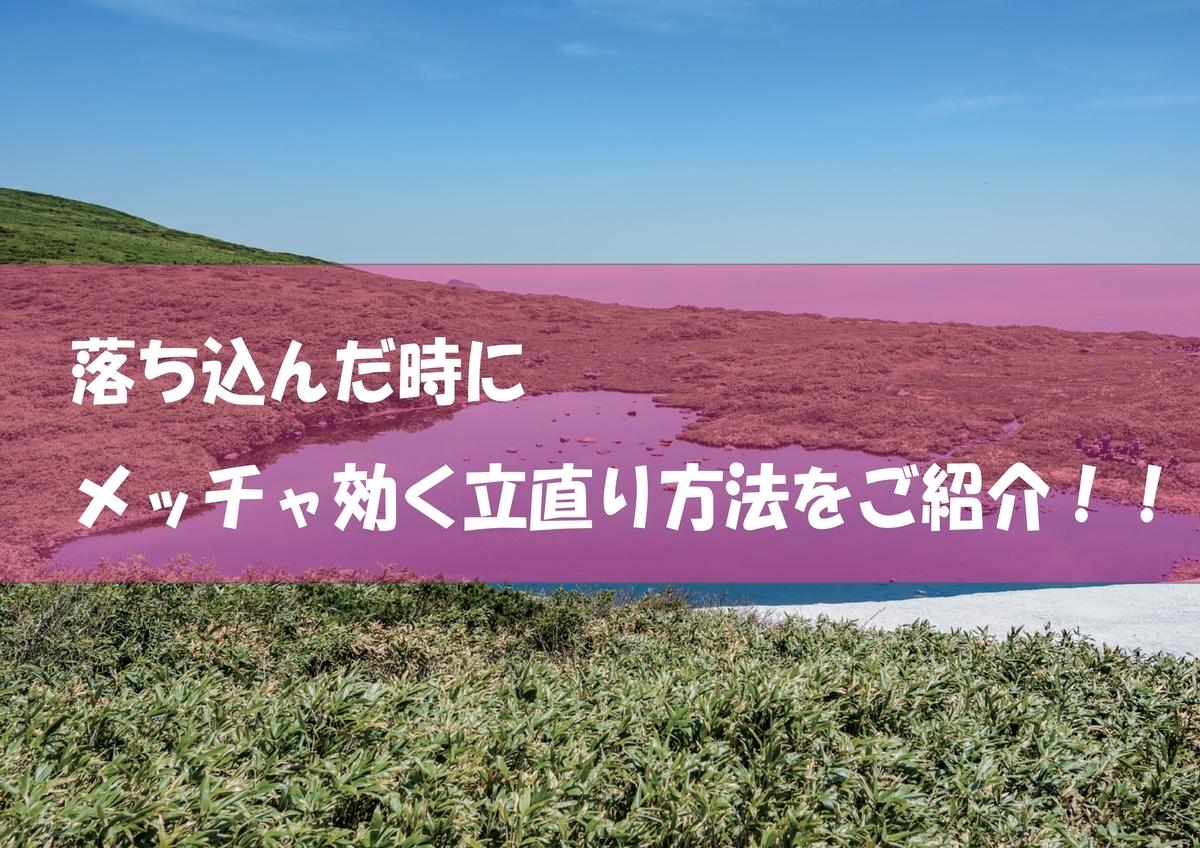 f:id:kokotiyoikurashi:20200127220728j:plain