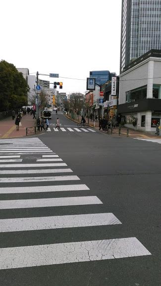 f:id:kokubunzaka:20190115161957j:plain