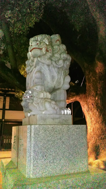 f:id:kokubunzaka:20190127221323j:plain