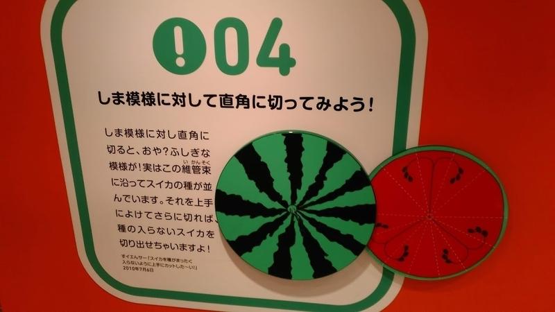f:id:kokubunzaka:20190130233232j:plain