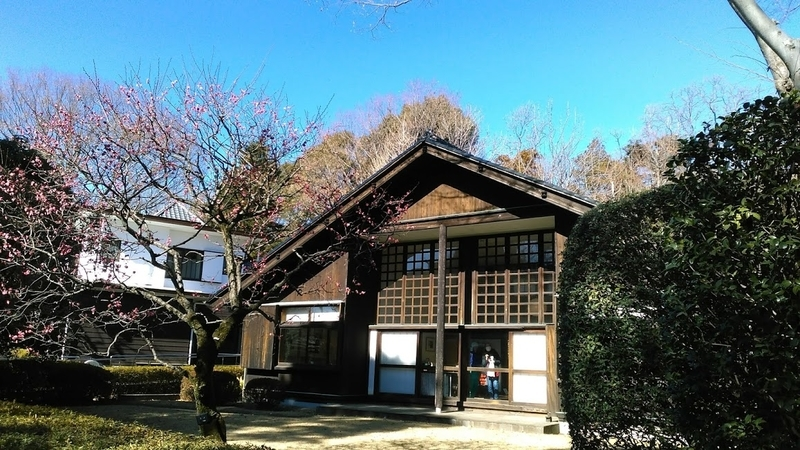 f:id:kokubunzaka:20190202225634j:plain