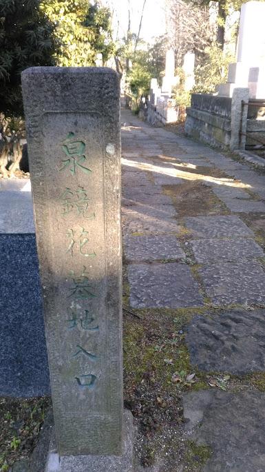 f:id:kokubunzaka:20190204214543j:plain