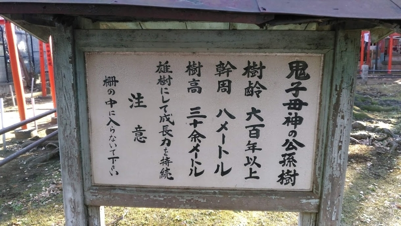 f:id:kokubunzaka:20190204214700j:plain