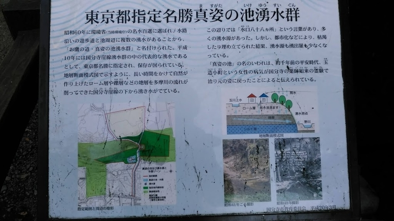 f:id:kokubunzaka:20190315161950j:plain