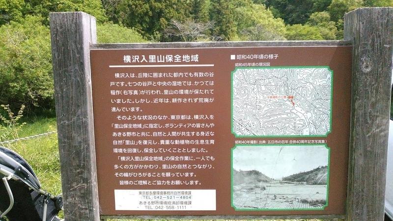 f:id:kokubunzaka:20190509175704j:plain