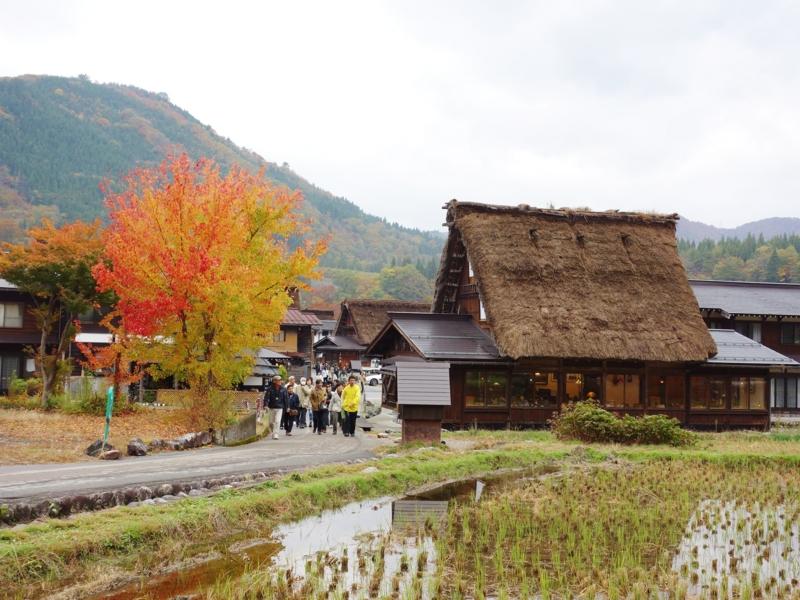 f:id:kokunai3333:20121110003628j:image