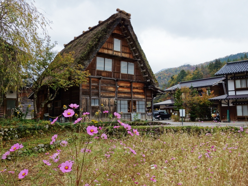 f:id:kokunai3333:20121110003658j:image