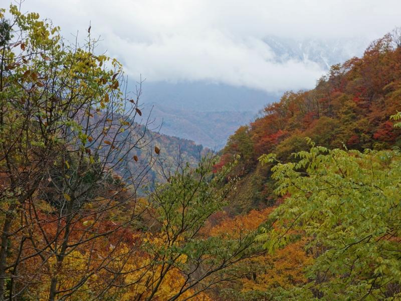 f:id:kokunai3333:20121110125219j:image:w640