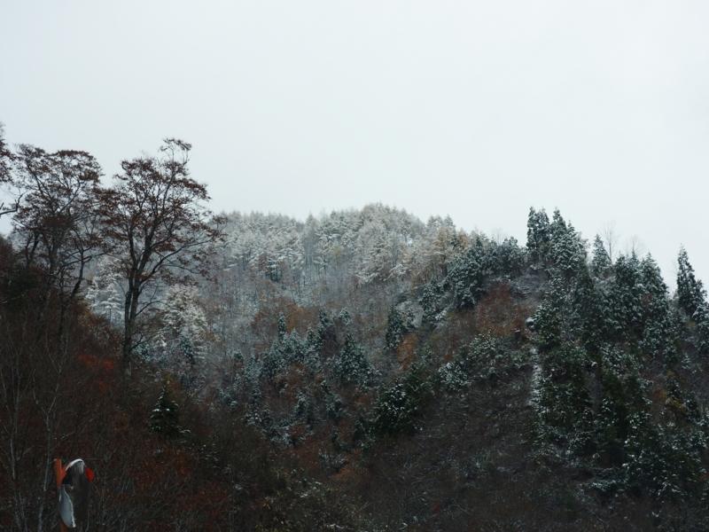 f:id:kokunai3333:20121110125222j:image:w640