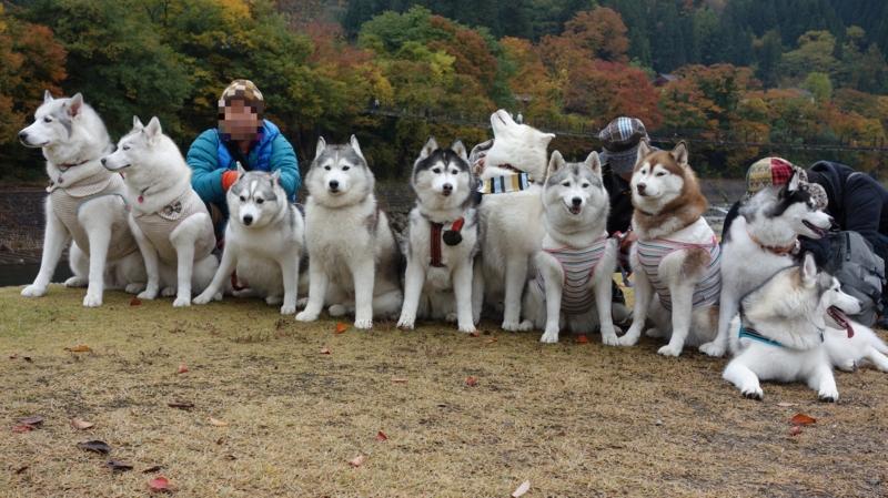 f:id:kokunai3333:20121126154245j:image