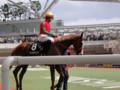 [馬]マイネヴィント 忘れな草賞4着 2010.4.11