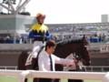 リベルタス 新馬戦優勝 2010.10.2 (1)