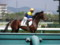 リベルタス 新馬戦優勝 2010.10.2 (2)