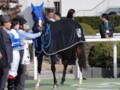 [馬]ロードハリアー 未勝利優勝