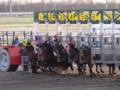 [馬]スタート! 2011.5.3門別5R