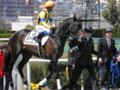 [馬]ブランクヴァース 未勝利戦2着 (1)