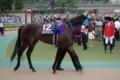[出資馬]フロアクラフト 優駿牝馬5着 (1)