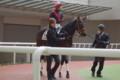 [出資馬]シードオブハピネス 新馬戦2着 (2)