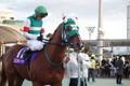 ブロンディーヴァ 東京2歳優駿牝馬5着