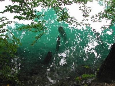 f:id:kokuriko-fufu:20080623022334j:image