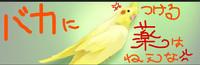 f:id:kokuriko-fufu:20080724105938j:image