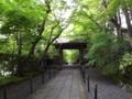 光明寺裏参道の新緑