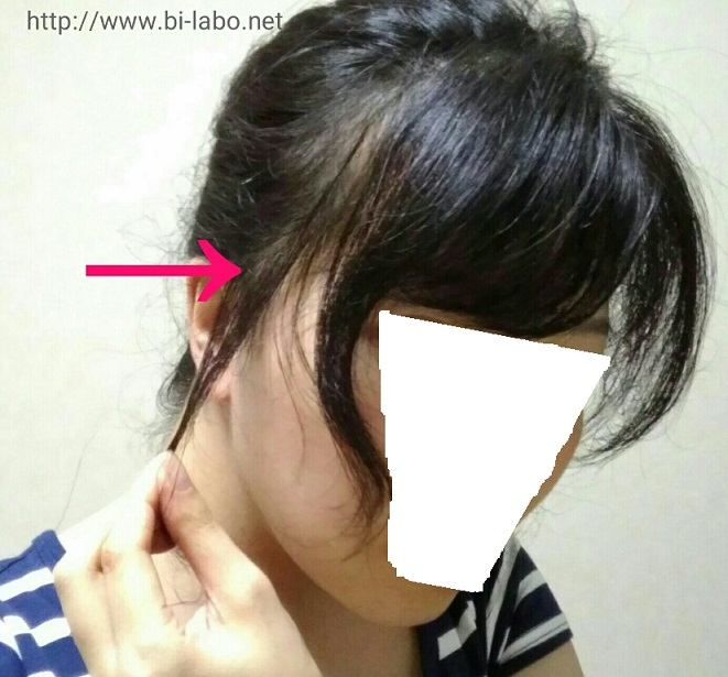f:id:komachi-k:20170727144503j:plain