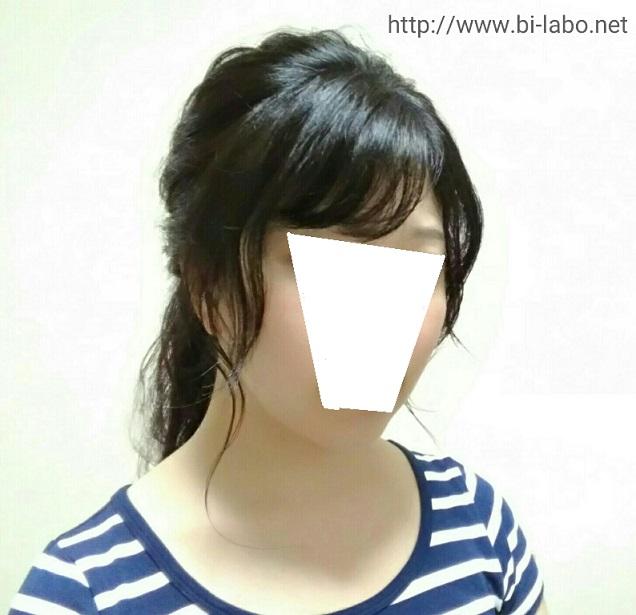 f:id:komachi-k:20170727152216j:plain
