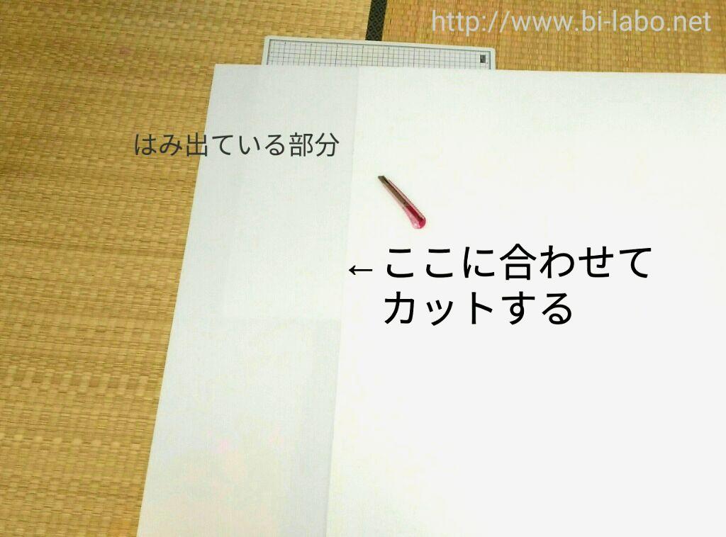 f:id:komachi-k:20170731130232j:plain