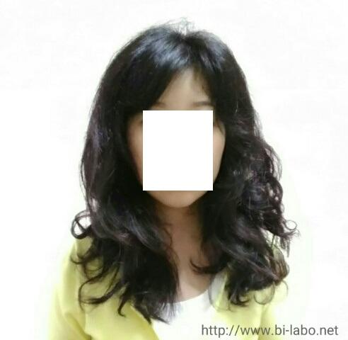 f:id:komachi-k:20170816171104j:plain