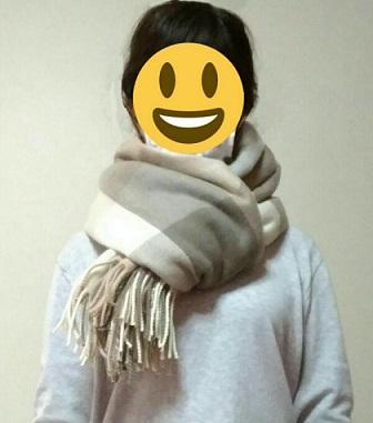 f:id:komachi-k:20180220151232j:plain