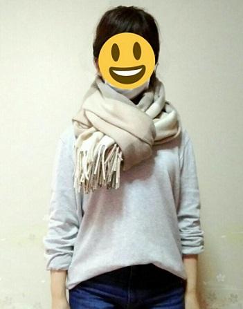 f:id:komachi-k:20180220151254j:plain