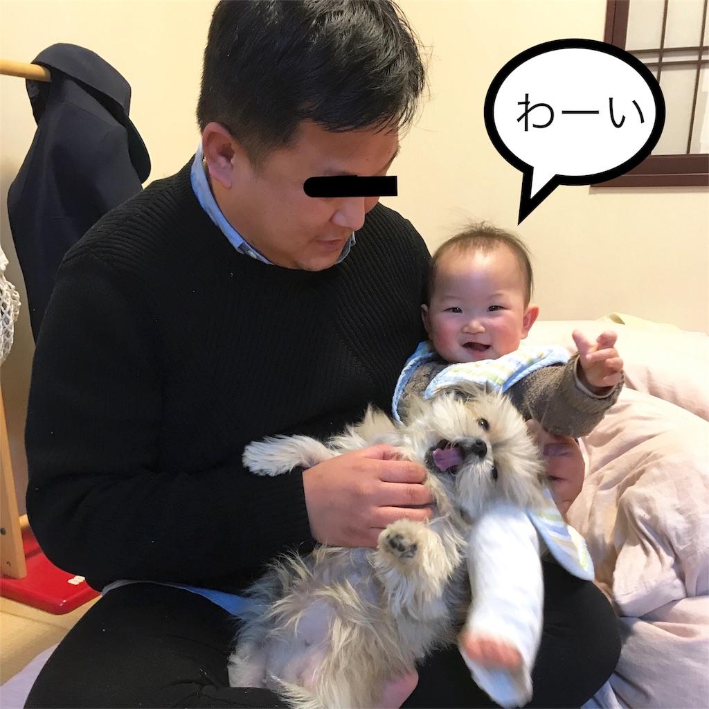 f:id:komachibiyori:20210118172827j:image