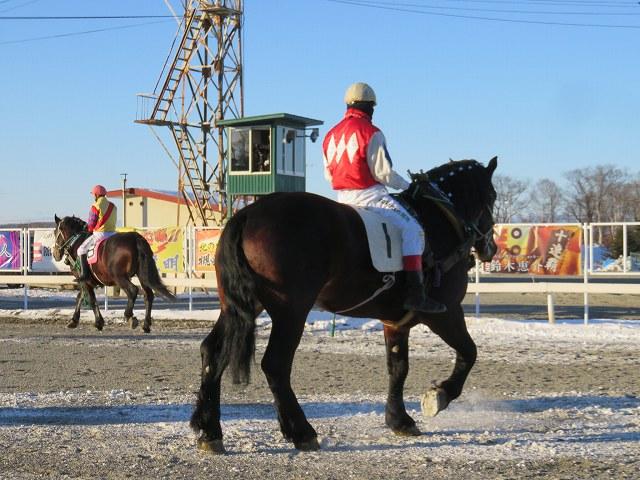 帯広競馬場のばん馬