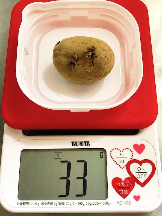 植えたタワラヨーデルの種芋