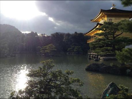 京都新聞写真コンテスト 輝きの金閣寺