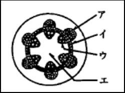 f:id:komazawajuku:20180609071830j:plain