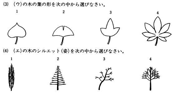 f:id:komazawajuku:20180706010009j:plain