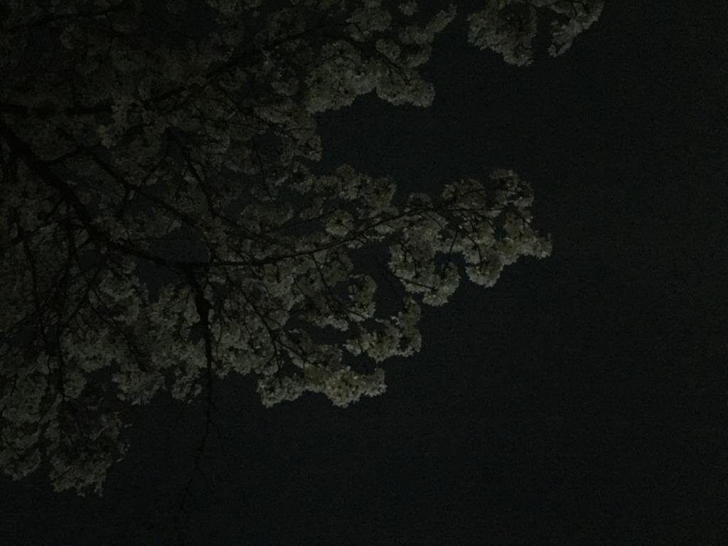 f:id:kometika:20180401091817j:plain