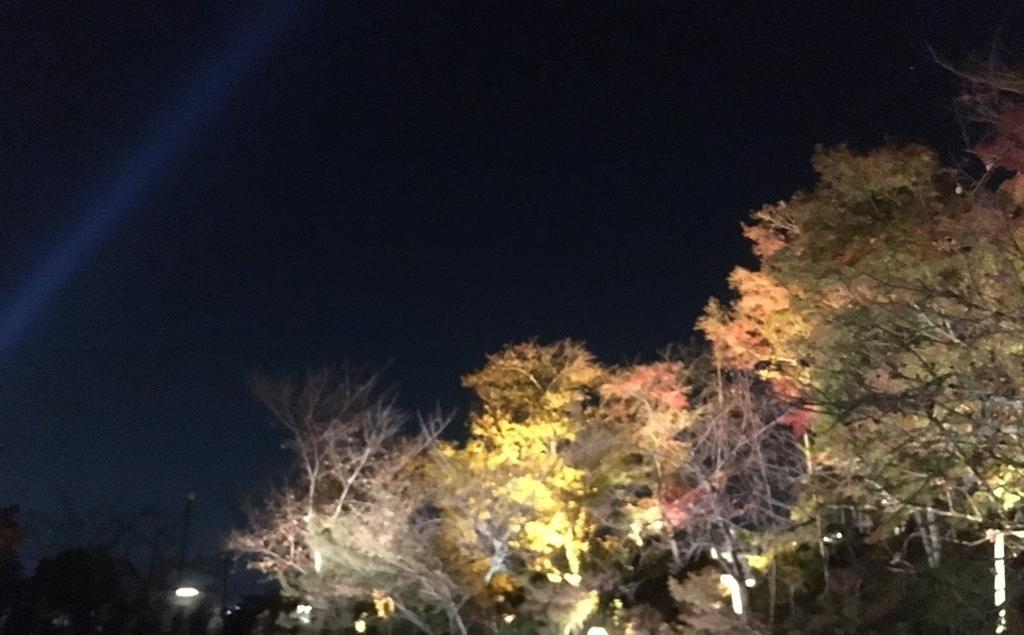 f:id:kometika:20181118064911j:plain