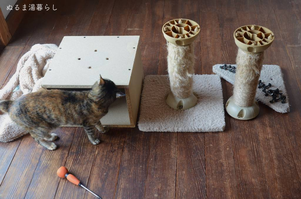cat-tower6