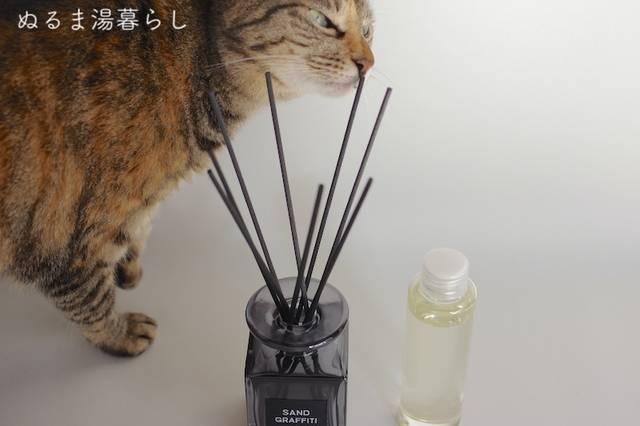 minimalistic-scent4