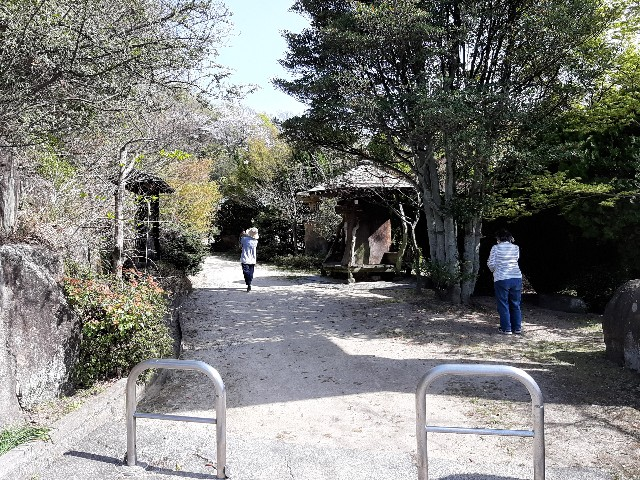 f:id:komochi_konbu:20210404061201j:image
