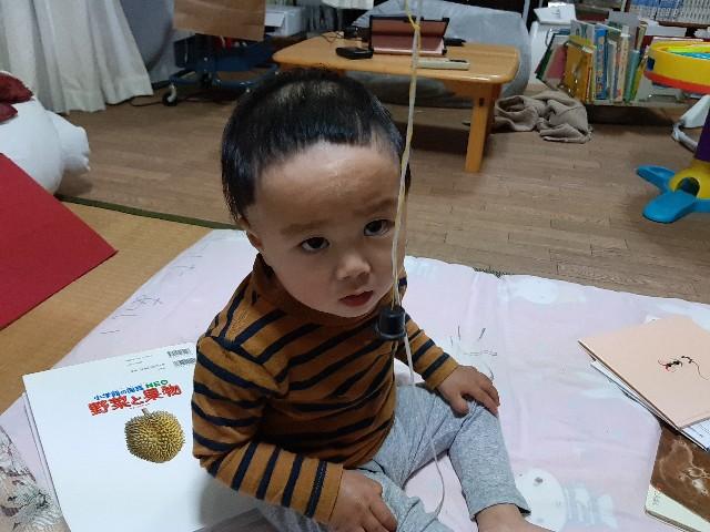 f:id:komochi_konbu:20210501143719j:image