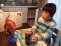 パパへのお土産『恐竜缶チョコ』食べながら♪
