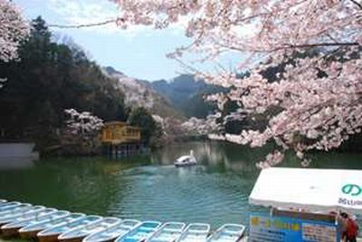 f:id:komonoyasan:20190211141928j:plain