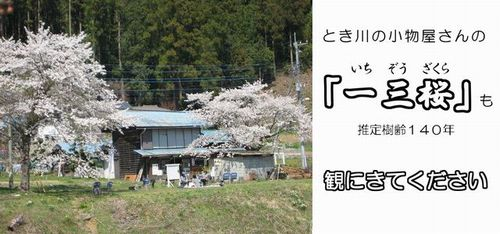 f:id:komonoyasan:20190211142158j:plain