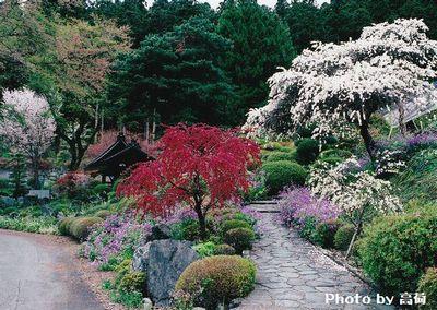 f:id:komonoyasan:20200310122351j:plain