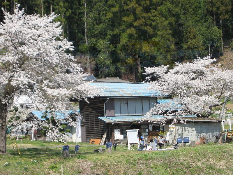 f:id:komonoyasan:20200326121415j:plain